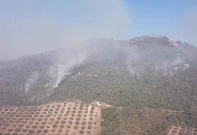 Adana, Osmaniye ve Mersin'de yangın