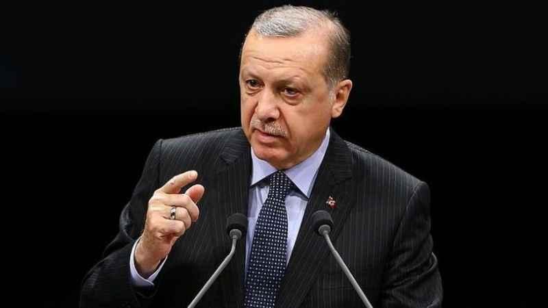 Erdoğan ırkçı Yunan vekile ne cevap verdi?