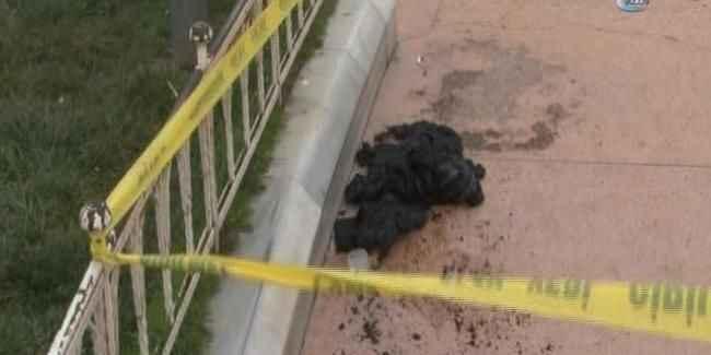 Taksim Meydanı'ndan bir kişi kendini yaktı