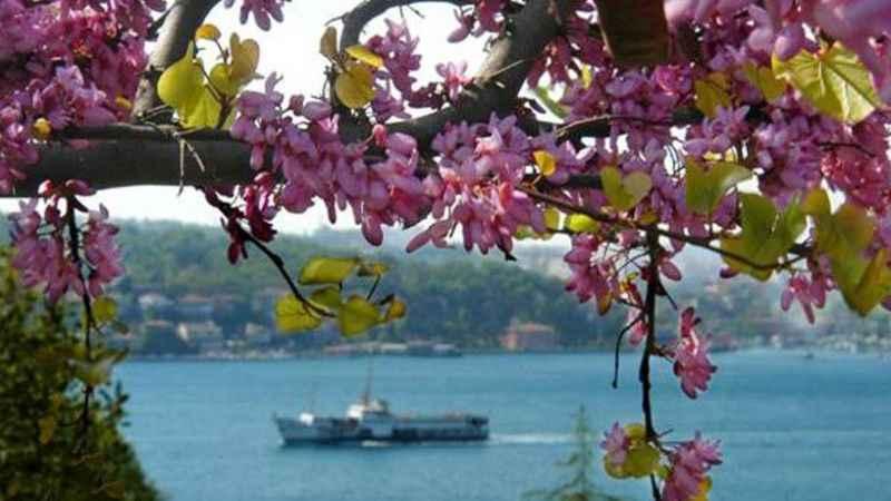 Hafta sonu hava nasıl olacak? İstanbul ve tüm şehirler (8-9 Ağustos)