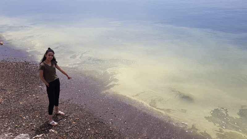 Assos sahilinde tedirgin eden görüntü
