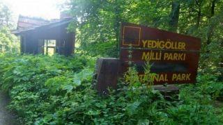 Yedigöller Milli Parkı'ndaki büfeler kiralanıyor