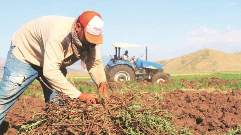 Çiftçi arttı üretim düştü