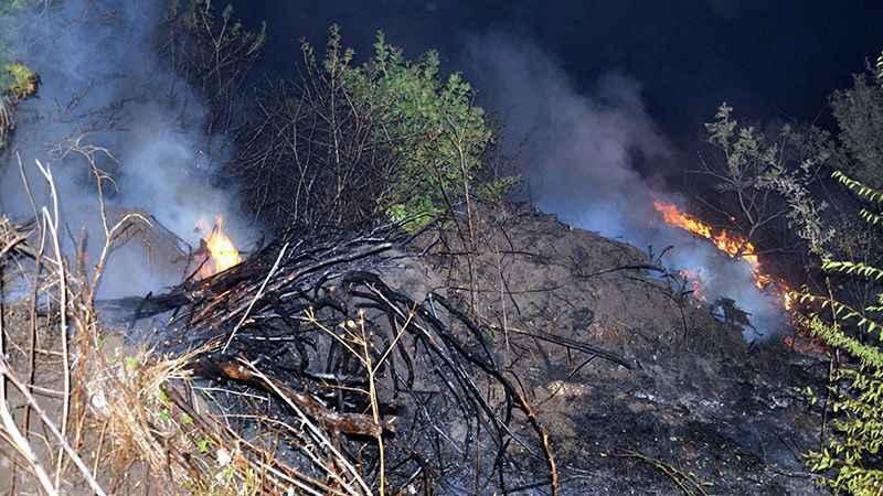 Bir orman yangını da Tekirdağ'da: Yüzlerce alan kül oldu