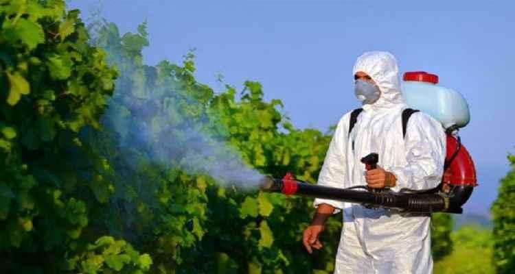 Böcek ilaçlama fiyatları