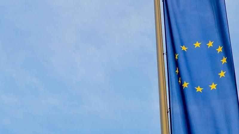 Türkiye'nin konuştuğu yasadaki Avrupa Birliği detayı ortaya çıktı