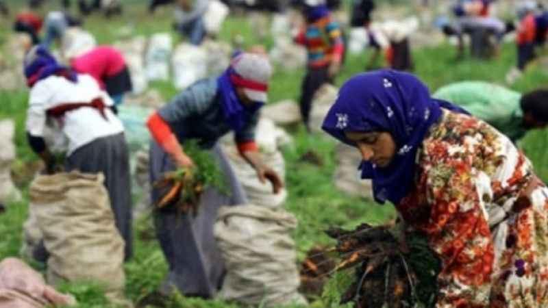 400 bin mevsimlik işçi yollara düşüyor
