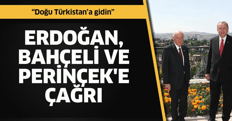 Erdoğan, Bahçeli ve Perinçek'e çağrı: Doğu Türkistan'a gidin