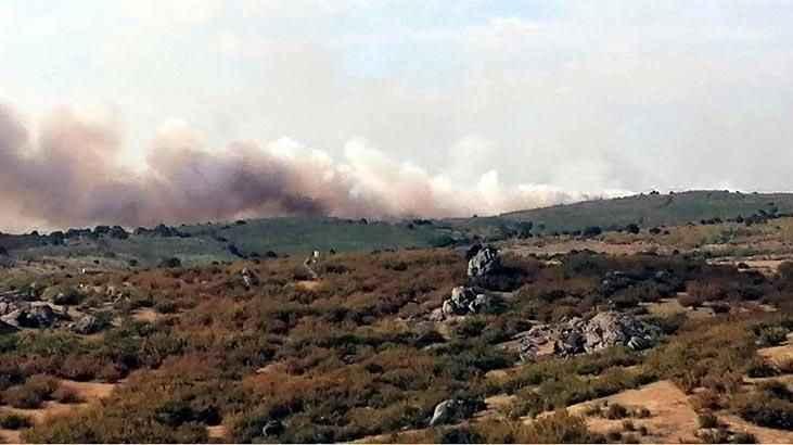Bulgaristan-Türkiye sınırında orman yangını 3 gündür söndürülemedi