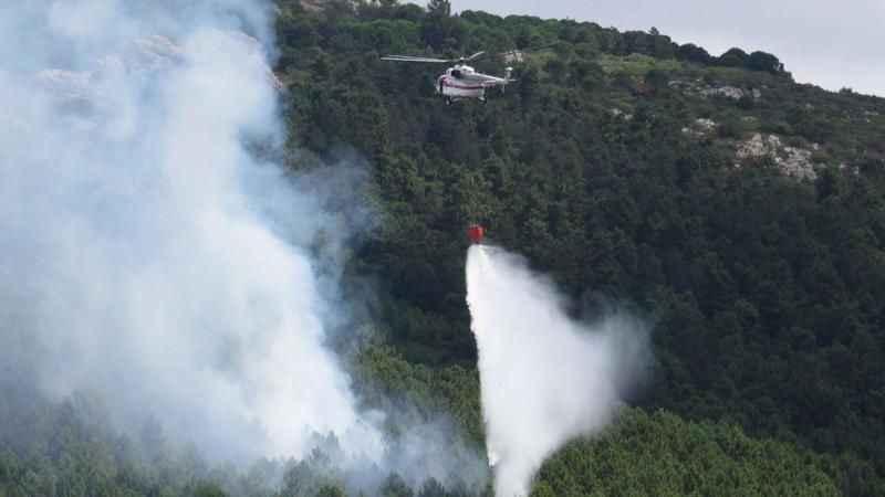 Son dakika! Aydos'ta ormanlık alanda yangın çıktı
