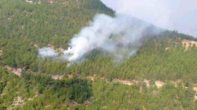 Kozan'da bir orman yangını daha