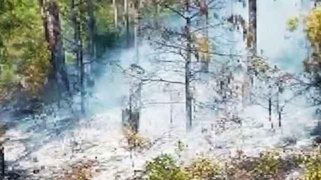 Ciğerlerimiz yanmaya devam ediyor! Marmaris'te korkutan orman yangını