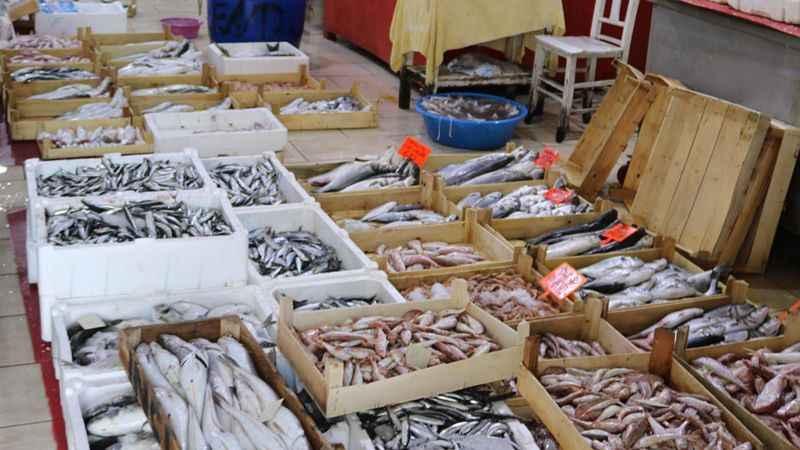 Balık sezonu 4.5 ay aranın ardından başlıyor