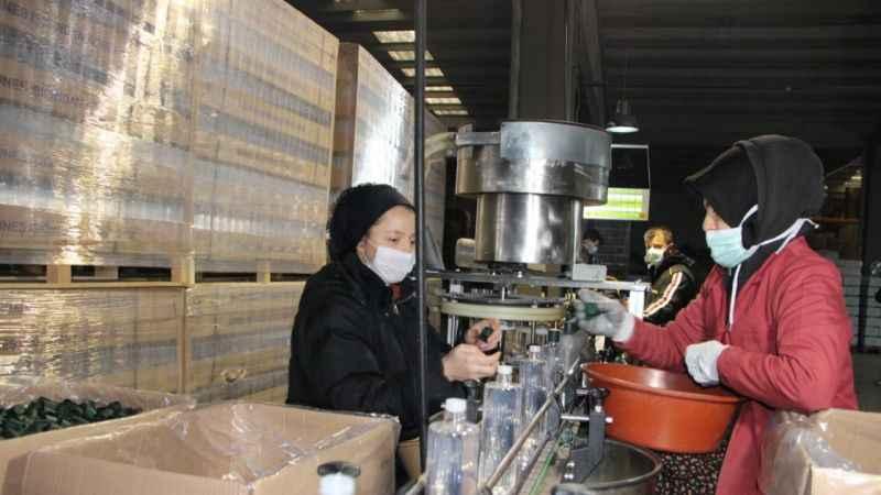 Kolonya üretimi yüzde 600 arttı