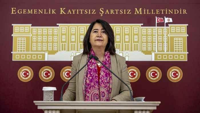 HDP'li SerpilKemalbay Pekgözegü: Acı reçeteyi, sermaye sınıfı içsin