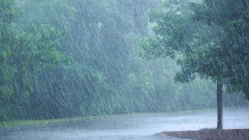 Rize hava durumu! Meteoroloji'den Rize'ye yağmur uyarısı (18 Ocak)