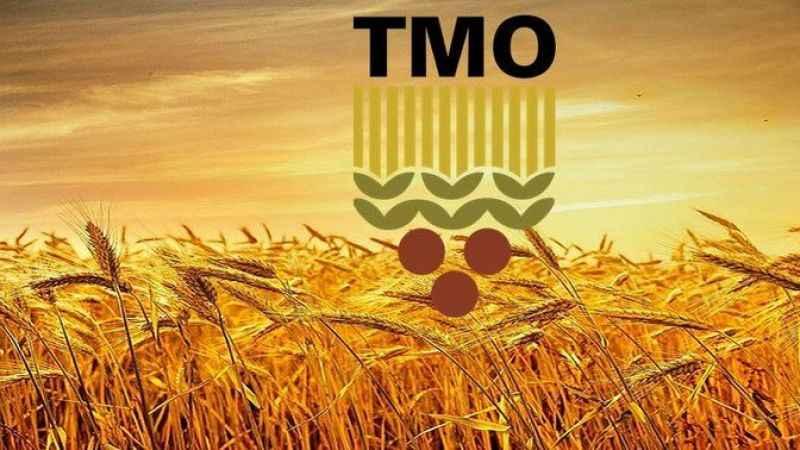 TMO 395 bin ton buğday ithal edecek