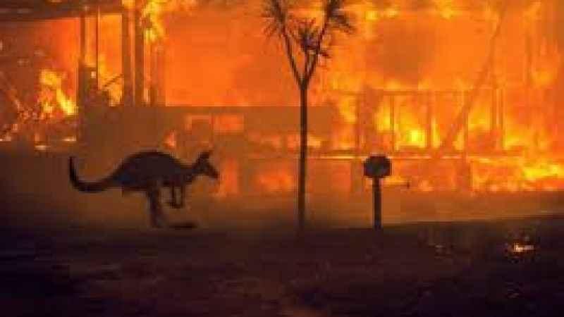 Avustralya'da yangınlar yeniden başladı! Felaket 2020'i aratmayacak!