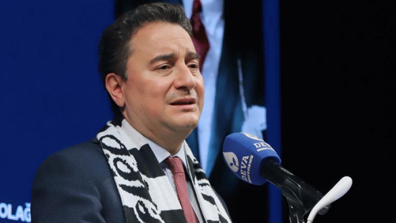 Babacan'dan hükümete Perinçek tepkisi