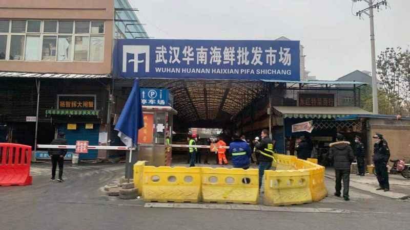 DSÖ'nün Wuhan raporu sızdı! Kovid kesinlikle laboratuvardan yayılmadı