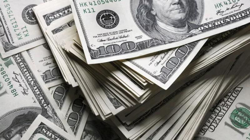 Vatandaşların döviz mevduatı 2.3 milyar dolar arttı
