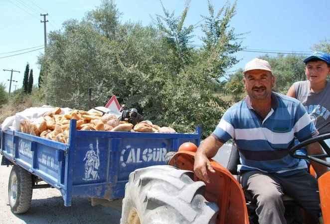 Türkiye'de her yıl 18,8 milyon ton gıda çöpe gidiyor