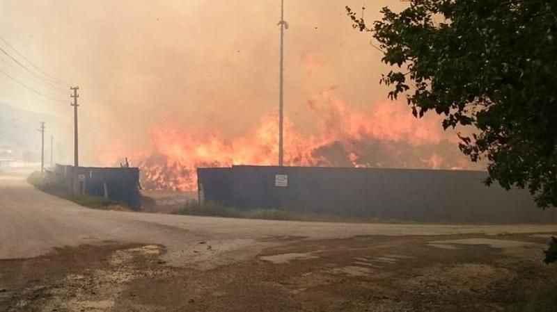 Afyonkarahisar'da bulunan biyokütle enerji tesisinde yangın çıktı!