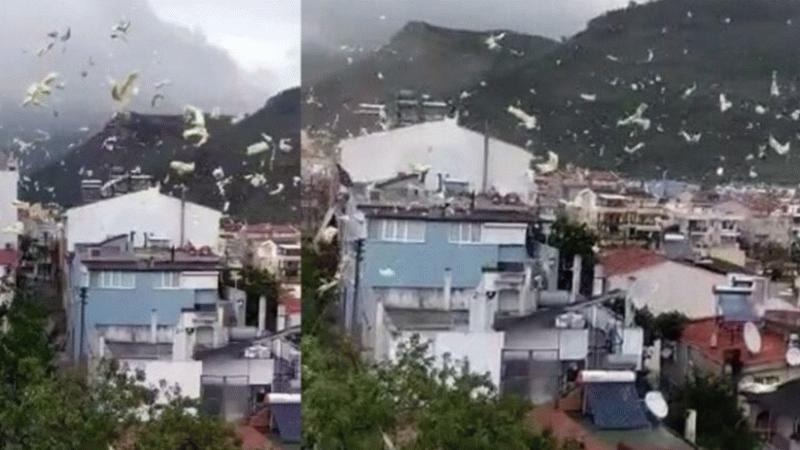 Çanakkale'de fırtına nedeniyle bir evin çatısı uçtu!