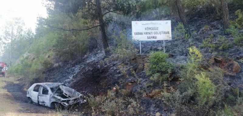Patlayan araç orman yangınına sebep oldu