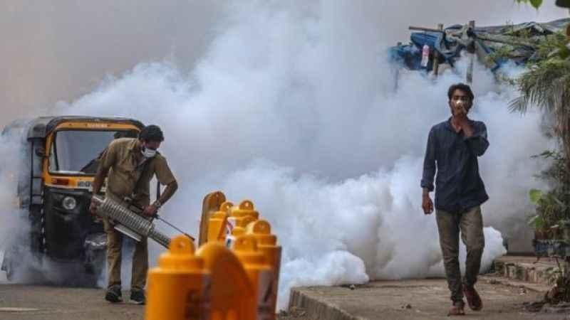 Hindistan'da hızla yayılan'kara mantar' salgını nedir?
