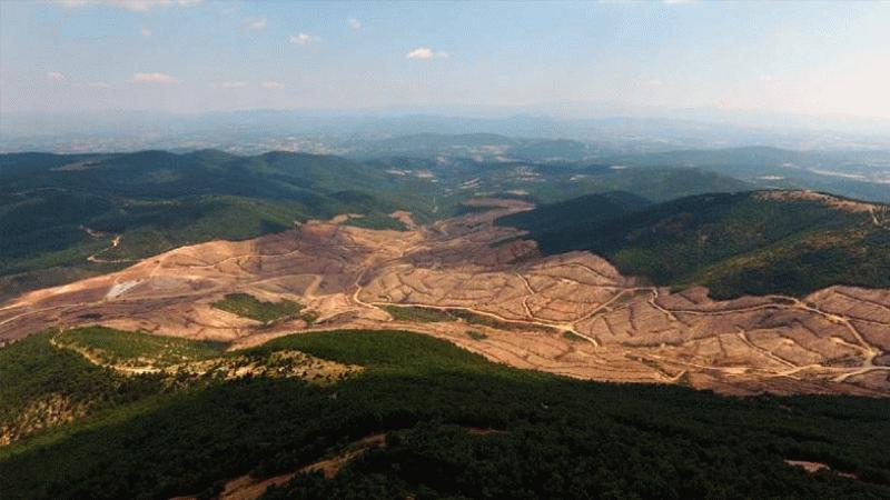 AKP'li Ödünç'ten ilginç çıkış: Yeşil alan oluşturmada rekor kırdık