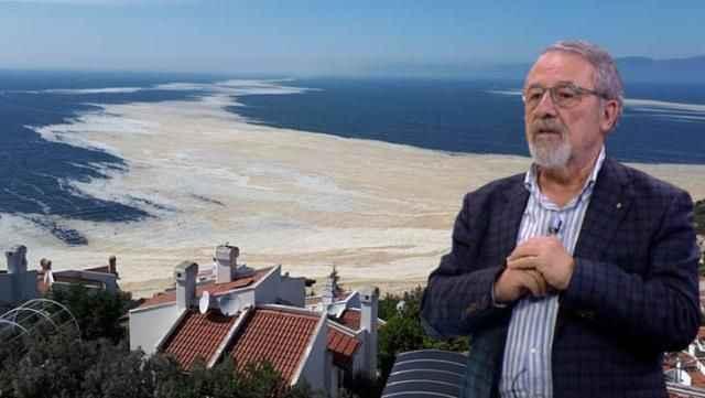 Prof. Dr. Görür'den Ulaştırma Bakanı'nın deniz salyası çıkışına itiraz