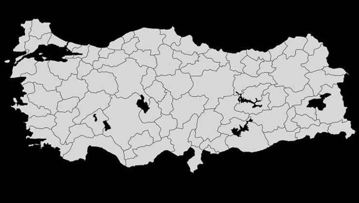 Türkiye istatistikleri korkutuyor! Her 3 kişiden birinde görülüyor
