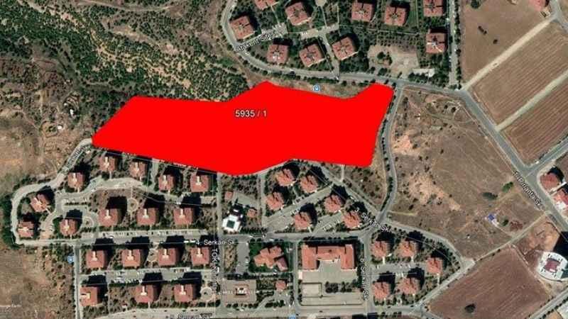 Ağaçlandırılacak arazi TOKİ tarafından satışa çıkarıldı!