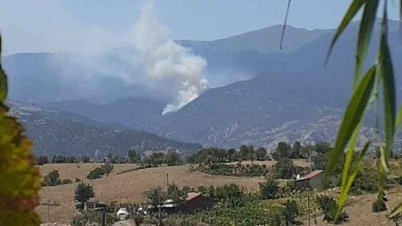 Bir orman yangını da Kütahya'da!