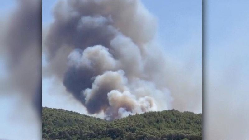 Bir yangında Bodrum'da başladı! Alevler yerleşim yerine kadar geldi