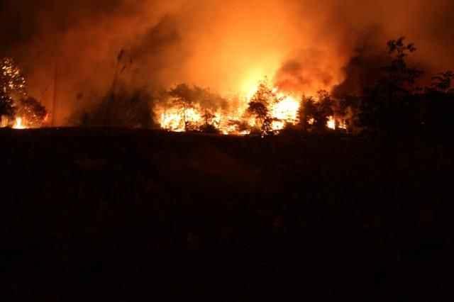 Manavgat'ta büyük felaket! Yangın bir türlü kontrol altına alınamıyor