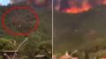 """Marmaris'te kundakçılar böyle görüntülendi: """"Biri ormanı ateşe verdi"""""""