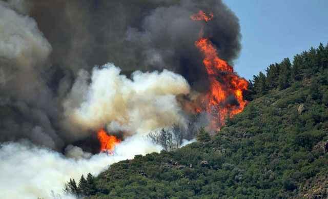 Marmaris'te çıkan orman yangını şiddetlendi! Karayolu trafiğe kapandı
