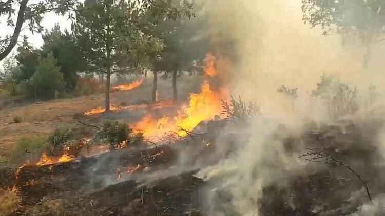 Bir kötü haber de Uşak'tan! Orman yangını evlere sıçradı