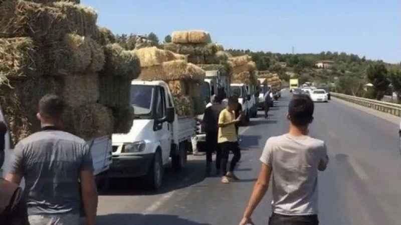 Manavgat'ta yangın sebebiyle aç kalan hayvanlara saman taşıdılar!