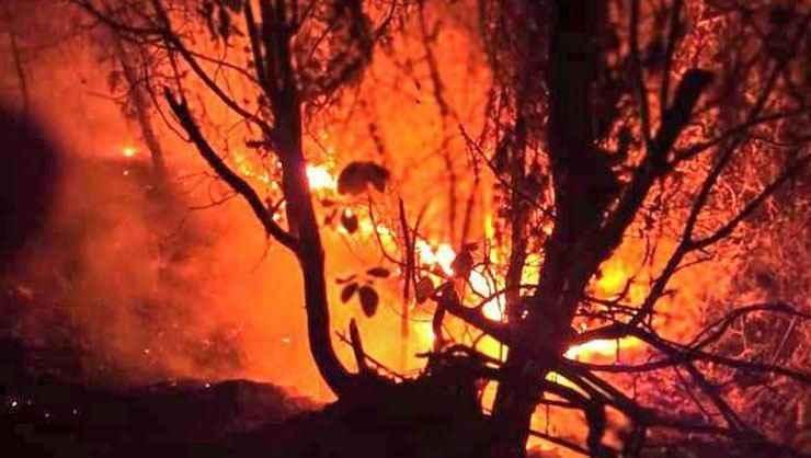 Samsun'da çıkan orman yangını kontrol altına alındı