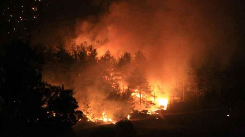 Son dakika! Bodrum yangın yeri! İki mahalle boşaltıldı