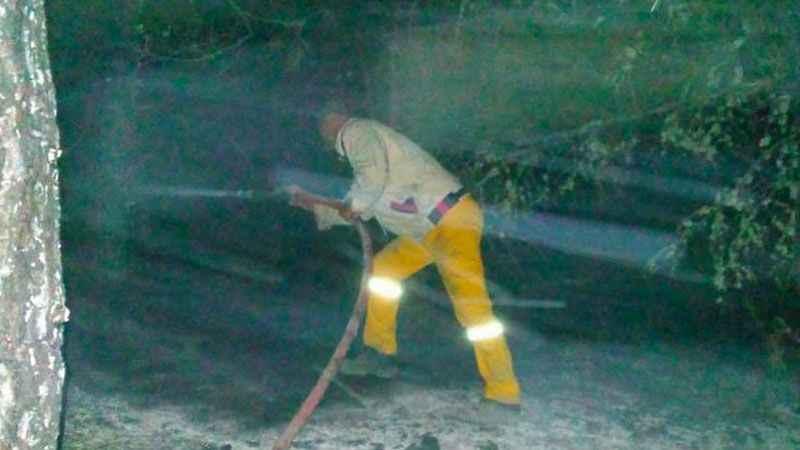 Samsun Vezirköprü'de orman yangını olduğu iddiaları asılsız çıktı!