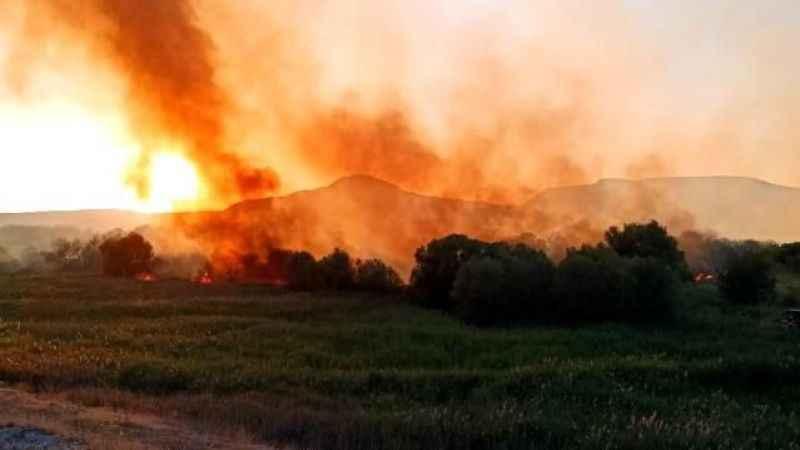 Ankara Nallıhan Kuş Cenneti'nde çıkan yangın kontrol altına alındı!