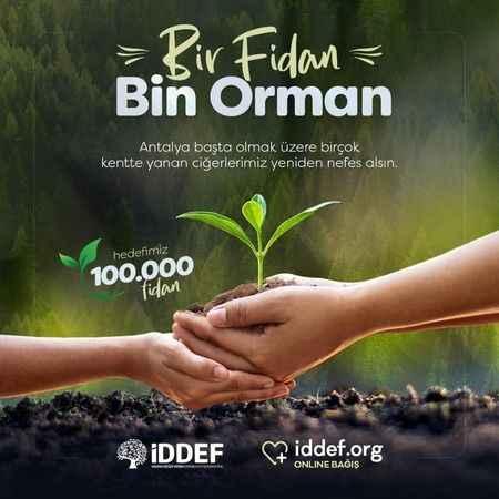 İDDEF'ten bir fidan bin orman projesi
