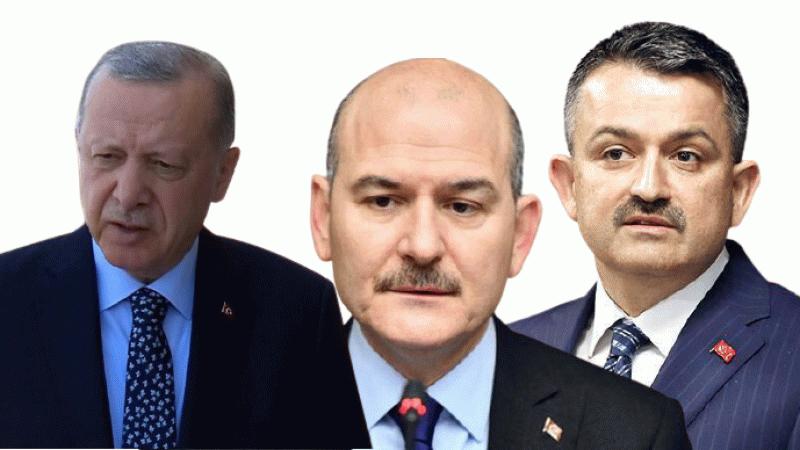 Erdoğan, Bakanlar Soylu ve Pakdemirli hakkında suç duyurusu