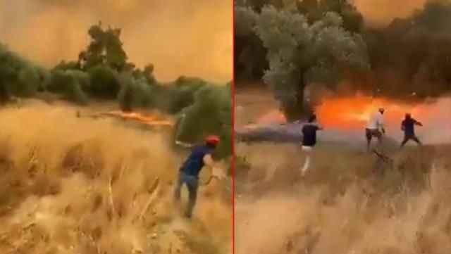 Patlayan kozalaklar yangını saniyeler içinde yaydı! Panik anları...