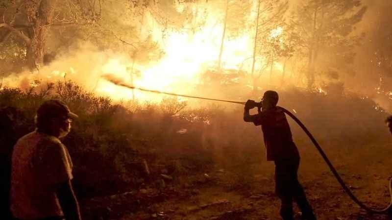 Nallıhan Kuş Cenneti'nde çıkan yangın kontrol altına alındı