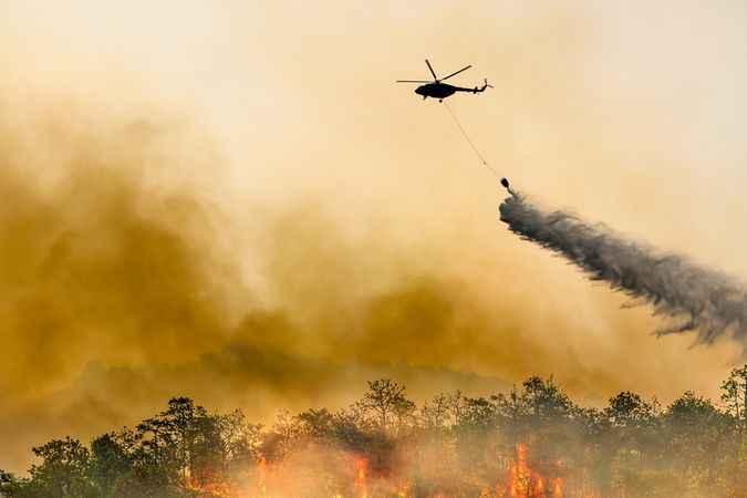 3 haftada 1.5 hektar kül oldu! Rusya'da orman yangını evlere sıçradı